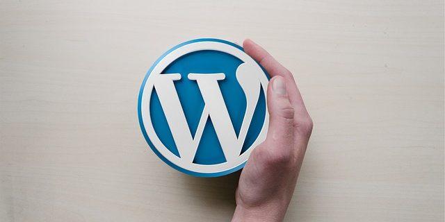 como contratar um desenvolvedor wordpress