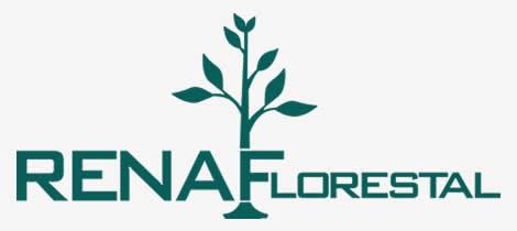 Renaf florestal cliente da GR3 WEB em criação de sites
