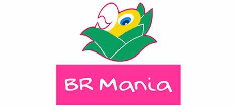 br-mania-cliente-de criação de sites
